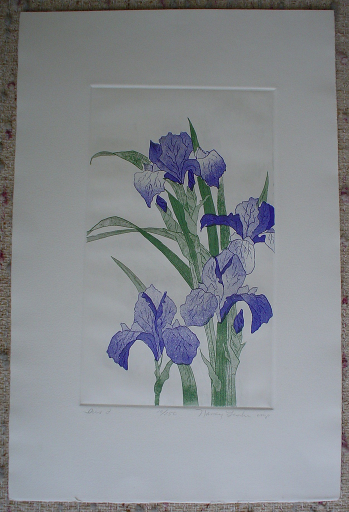 Iris 1 by Nancy Leslie, shown with full margins - original etching, signed and numbered edition of 150