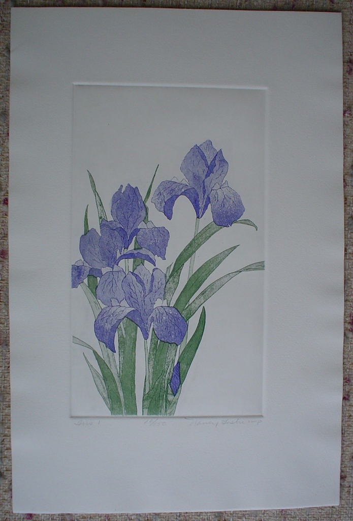 Iris 2 by Nancy Leslie, shown with full margins - original etching, signed and numbered edition of 150