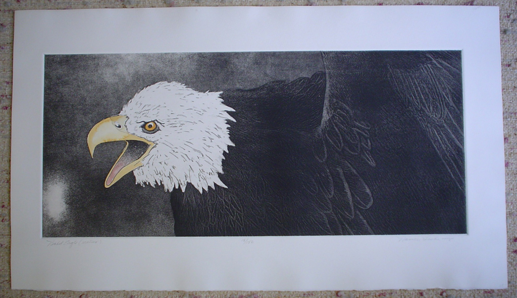 Bald Eagle by Nancy Leslie, shown with full margins - original etching, signed and numbered 18/ 150