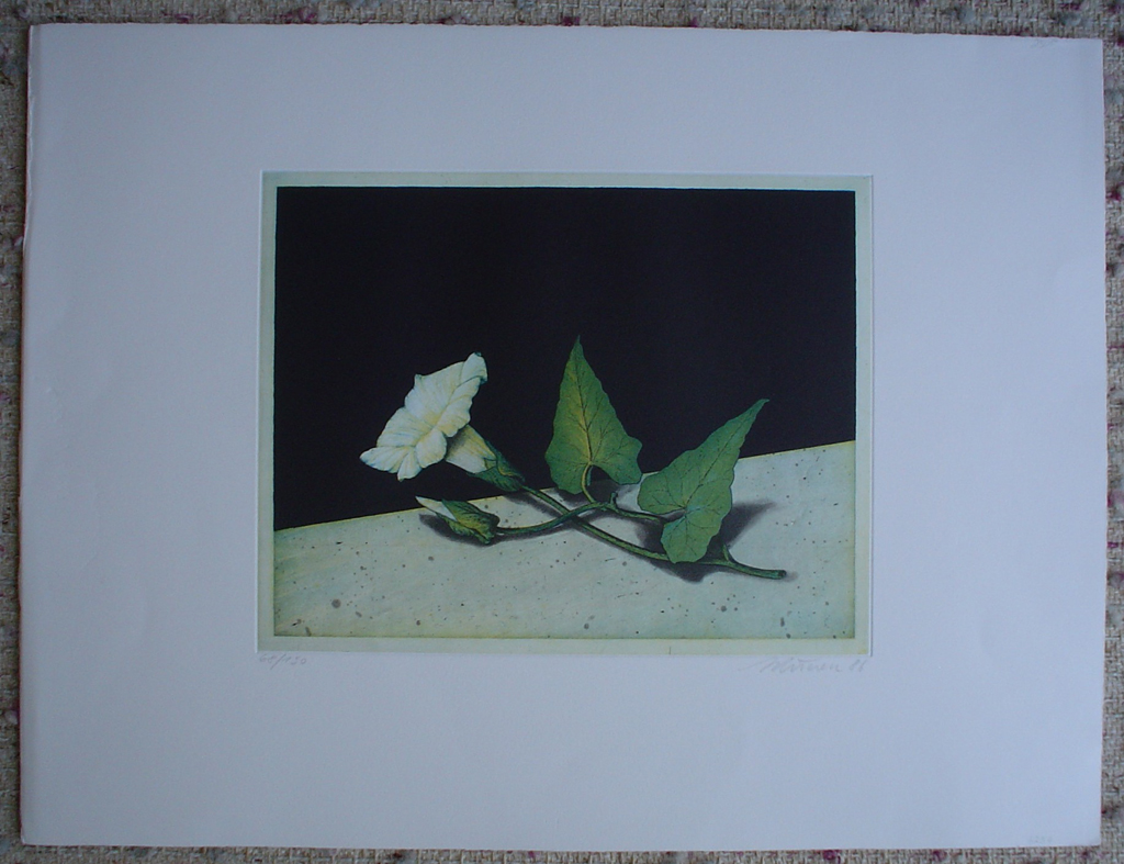 Morning Glory by Kurt Schoenen, shown with full margins - original engraving, signed and numbered 68/ 150