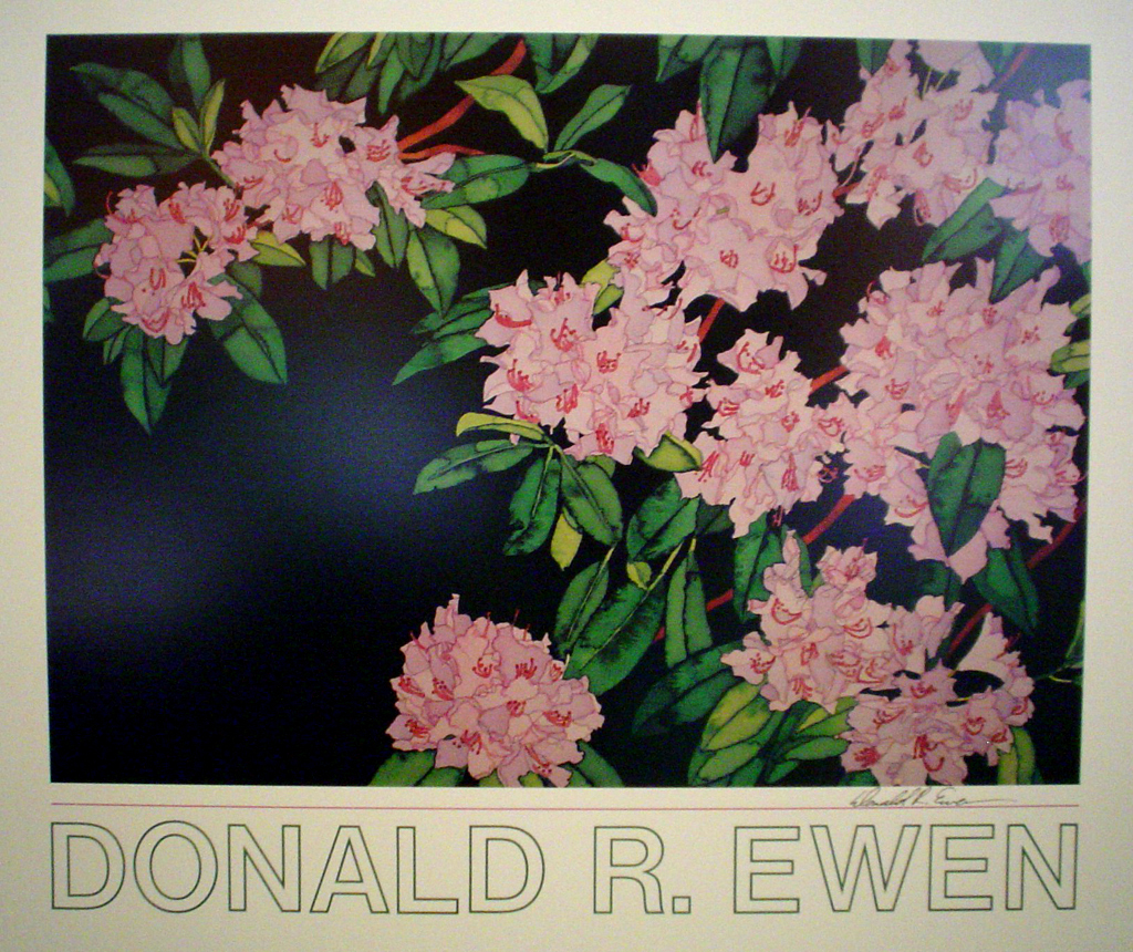 Rhododendrons by Donald Ewen, hand-signed by artist - fine art poster print