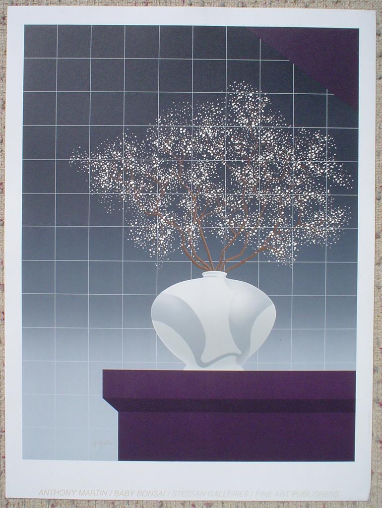 Baby Bonsai by Anthony Martin, shown with full margins - original silkscreen fine art print