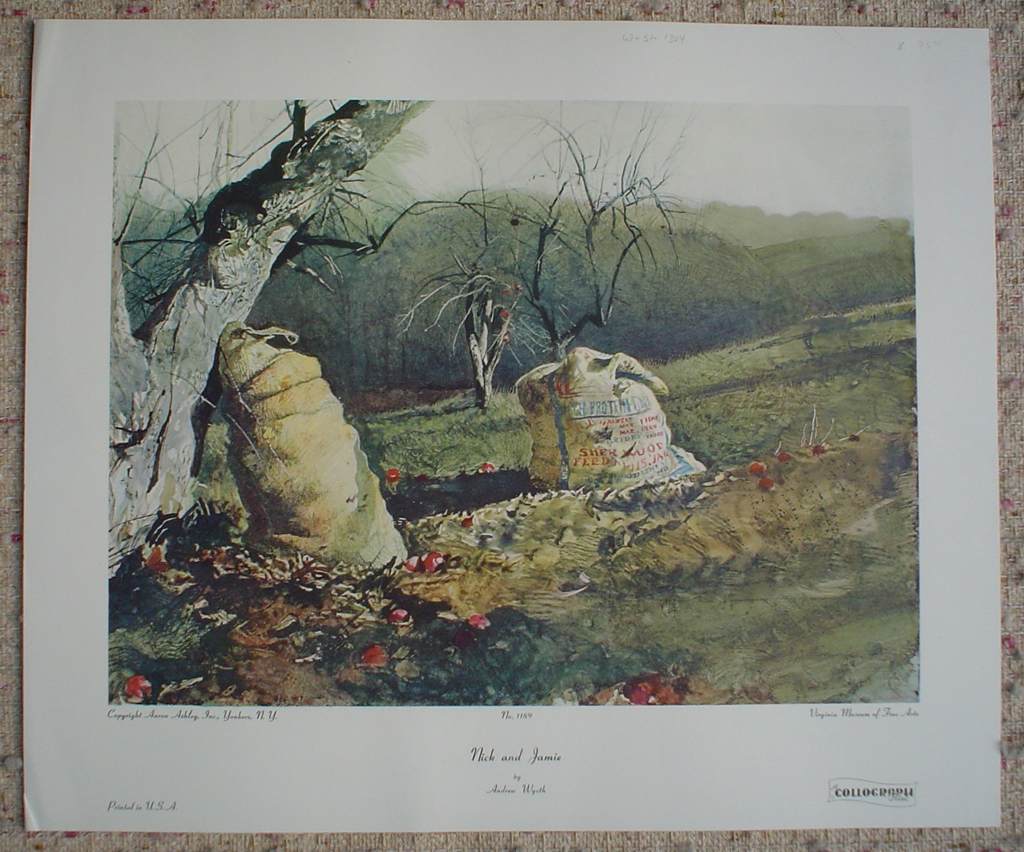 Nick And Jamie by Andrew Newell Wyeth, shown with full margins - collectible collotype fine art print