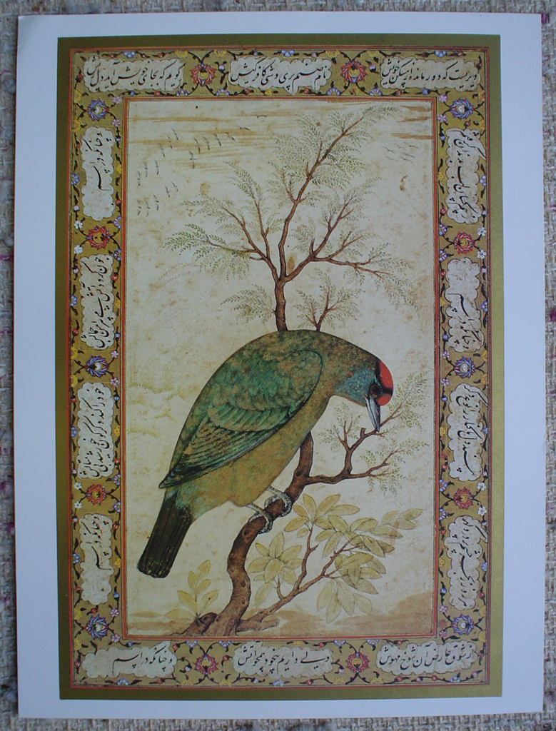 Himalayan Blue-Throated Berbet by unknown artist, UNESCO print, shown with full margins - offset lithograph fine art print
