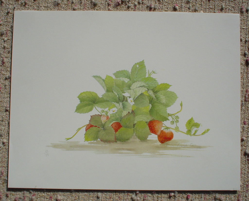 Strawberries by Nicolette Cross, signed by artist and numbered 12/175, shown with full margins - offset lithograph limited edition fine art print
