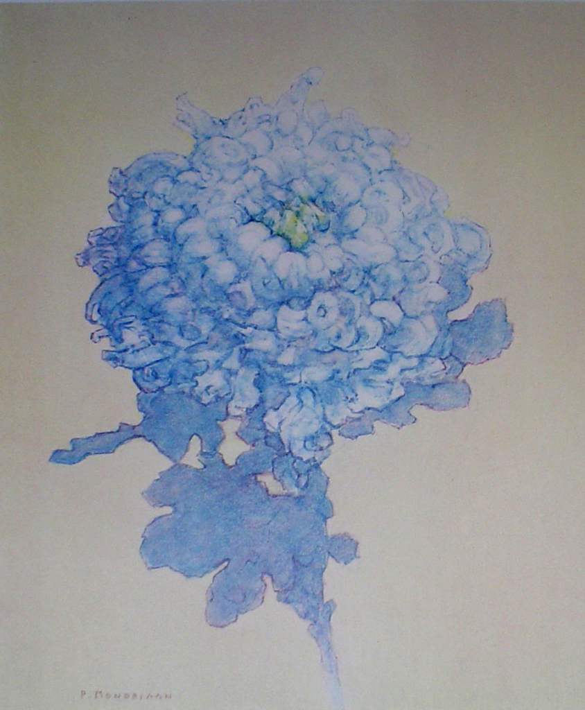 Blue Chrysanthemum by Piet Mondrian - collectible collotype fine art print