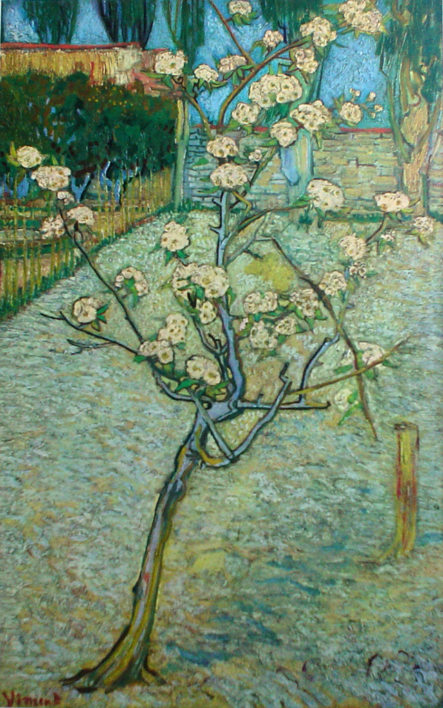 Peartree In Bloom by Vincent Van Gogh - offset lithograph fine art print
