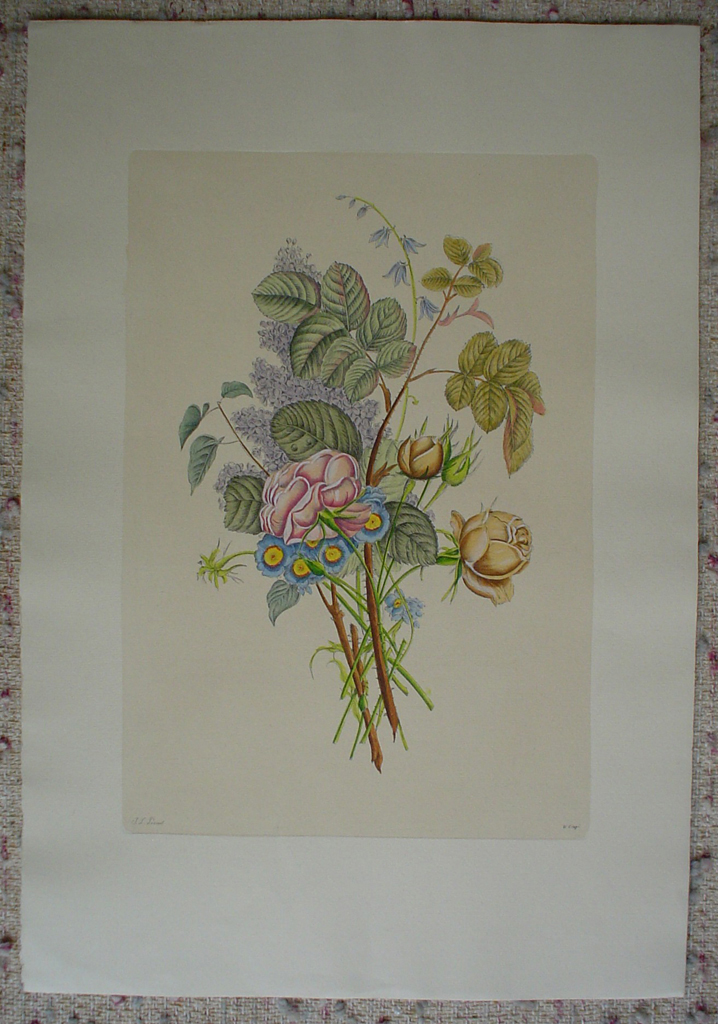 Flowers Lilacs Roses by Jean-Louis Prevost, shown with full margins - restrike etching, handcoloured original print