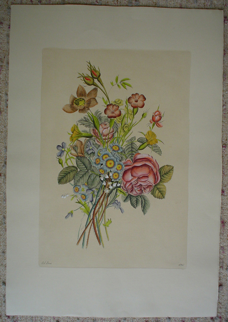 Flowers Rose Buds by Jean-Louis Prevost, shown with full margins - restrike etching, handcoloured original print