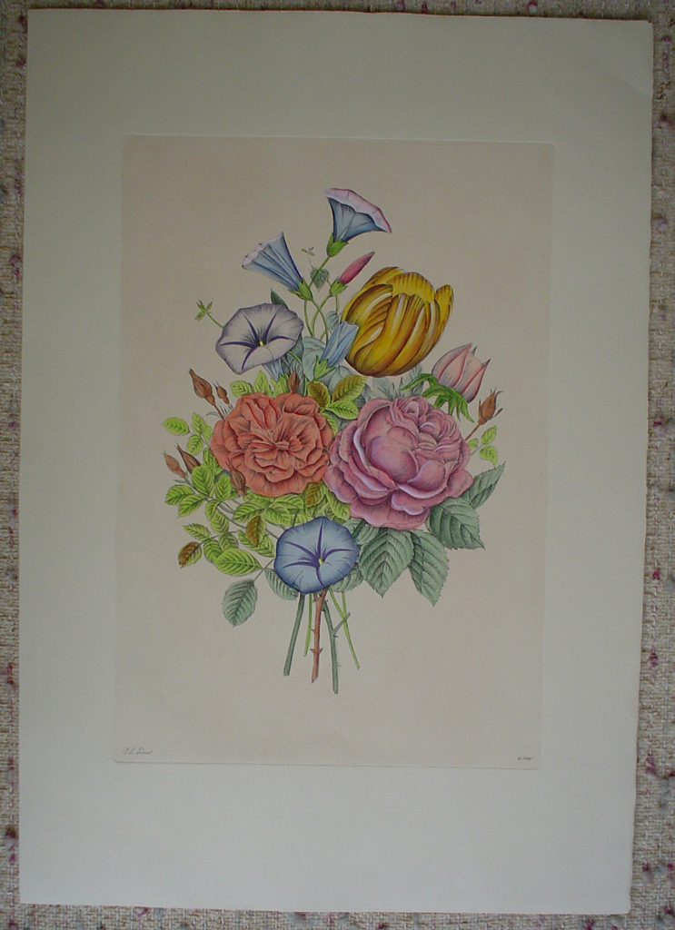 Mixed Flowers Petunia by Jean-Louis Prevost, shown with full margins - restrike etching, hand-coloured original print