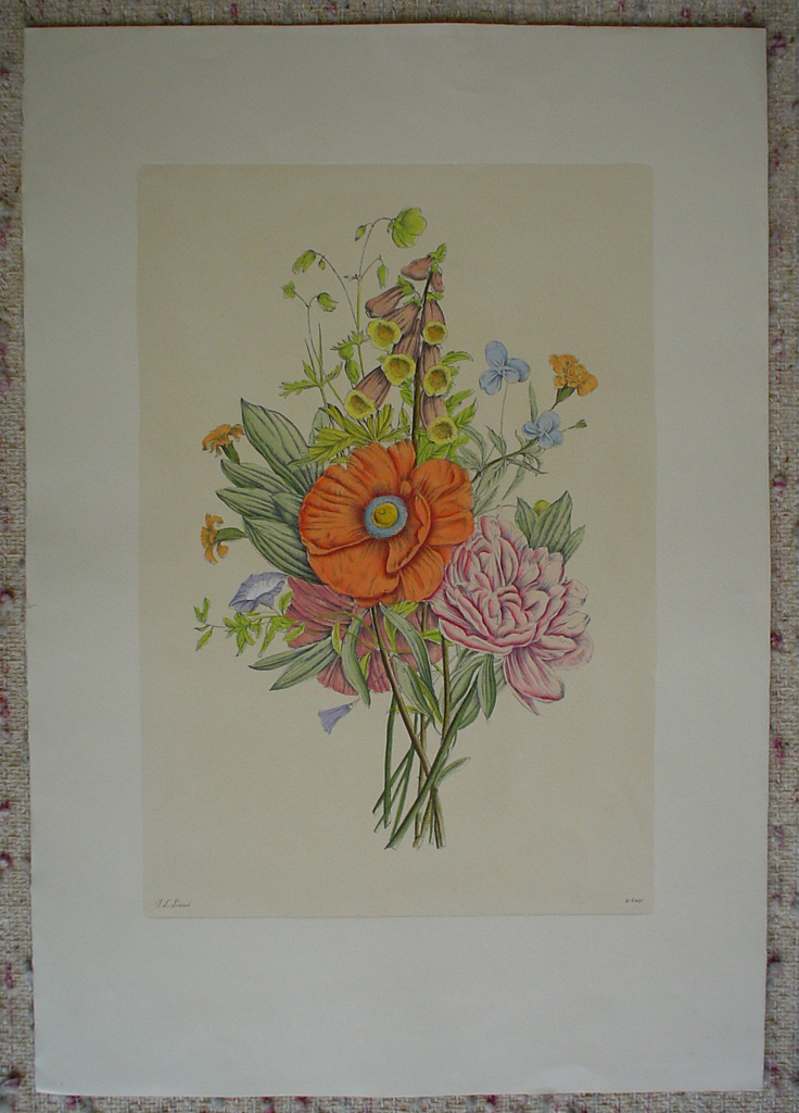 Mixed Flowers Poppy by Jean-Louis Prevost, shown with full margins - restrike etching, hand-coloured original print