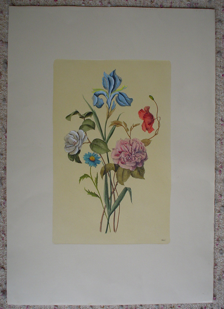 Botanical, Mixed Flowers Iris by unknown artist, shown with full margins - restrike etching, hand-coloured original print