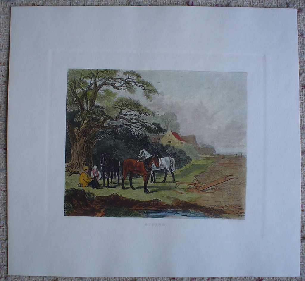 Spring by John Dearman, shown with full margins - restrike etching, hand-coloured original print