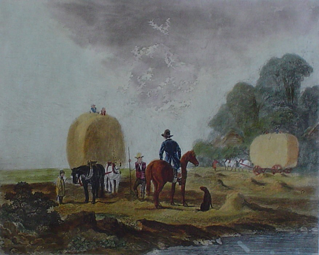 Summer by John Dearman - restrike etching, hand-coloured original print