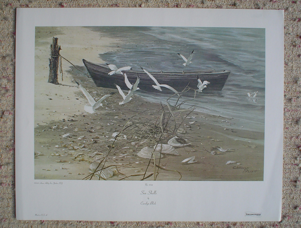 Sea Shells by Carolyn Blish, shown with full margins - offset lithograph fine art print