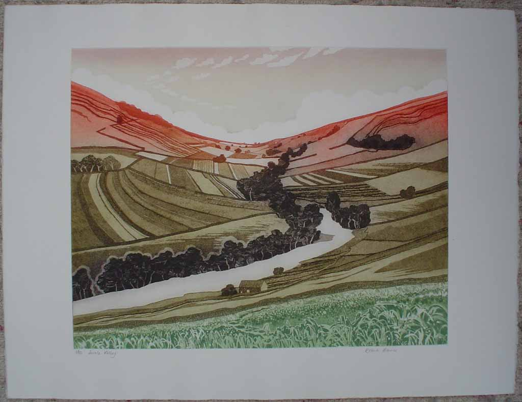 Swale Valley by Robert Barnes, shown with full margins - original etching, signed and numbered 25/ 100