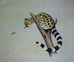 Genet And The Beautiful Sunbird by Andrew Cooper - offset lithograph reproduction vintage fine art print