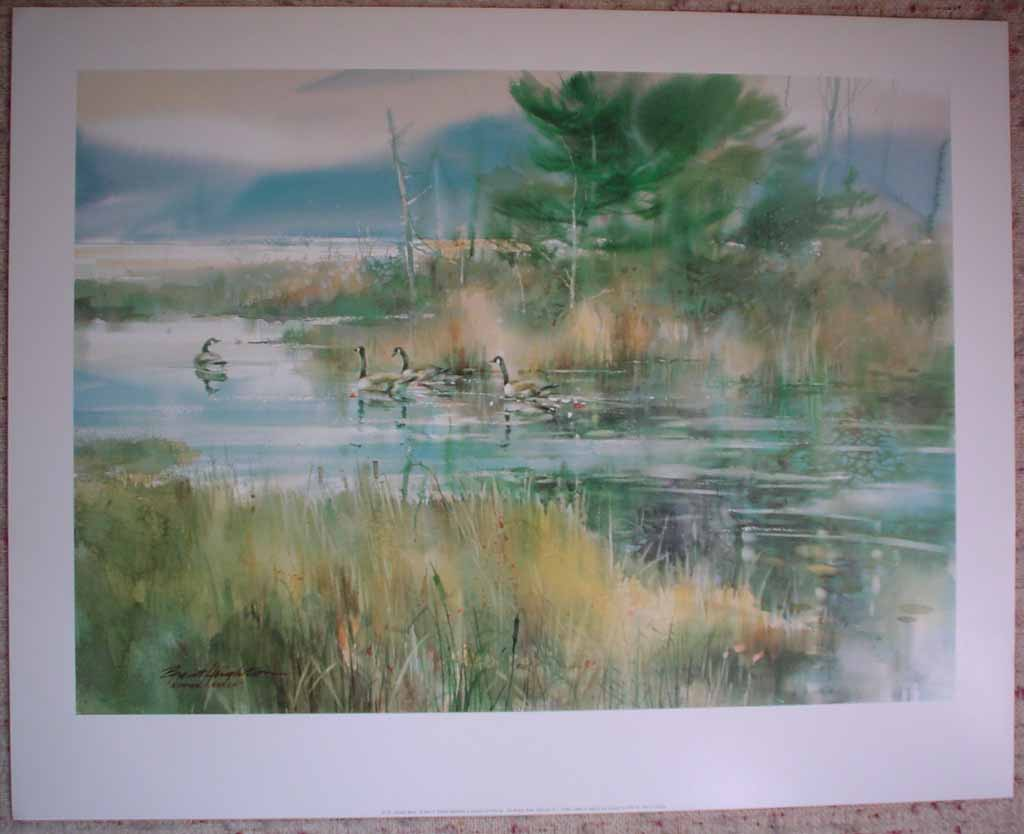 Summer Marsh: Canada Geese by Brent Heighton, shown with full margins - offset lithograph reproduction vintage fine art print