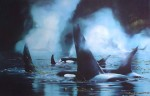 Kingdom Of The Orca by Bruce Muir - hand-numbered AP 37/50, titled and signed by the artist - limited edition artist's proof offset lithograph vintage fine art print