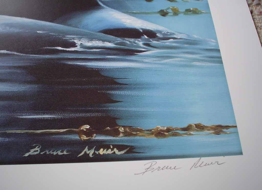 Kingdom Of The Orca by Bruce Muir, detail to show signature - hand-numbered AP 37/50, titled and signed by the artist - limited edition artist's proof offset lithograph vintage fine art print