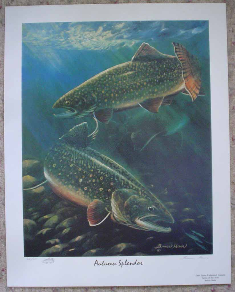 Autumn Splendor: Trout 1994 by Bruce Muir, shown with full margins - hand-numbered 62/65 and signed by the artist - limited edition offset lithograph vintage fine art print