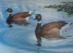 Black Brant by Bruce Muir, Brant Festival 1991 - hand-signed by artist - offset lithograph reproduction vintage fine art poster print