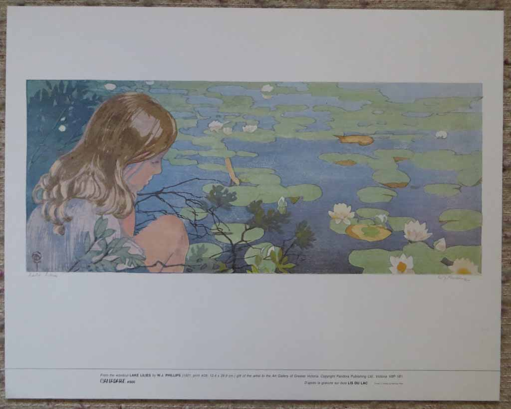 Lake Lilies by Walter Joseph (W.J.) Phillips, shown with full margins - offset lithograph reproduction vintage fine art print