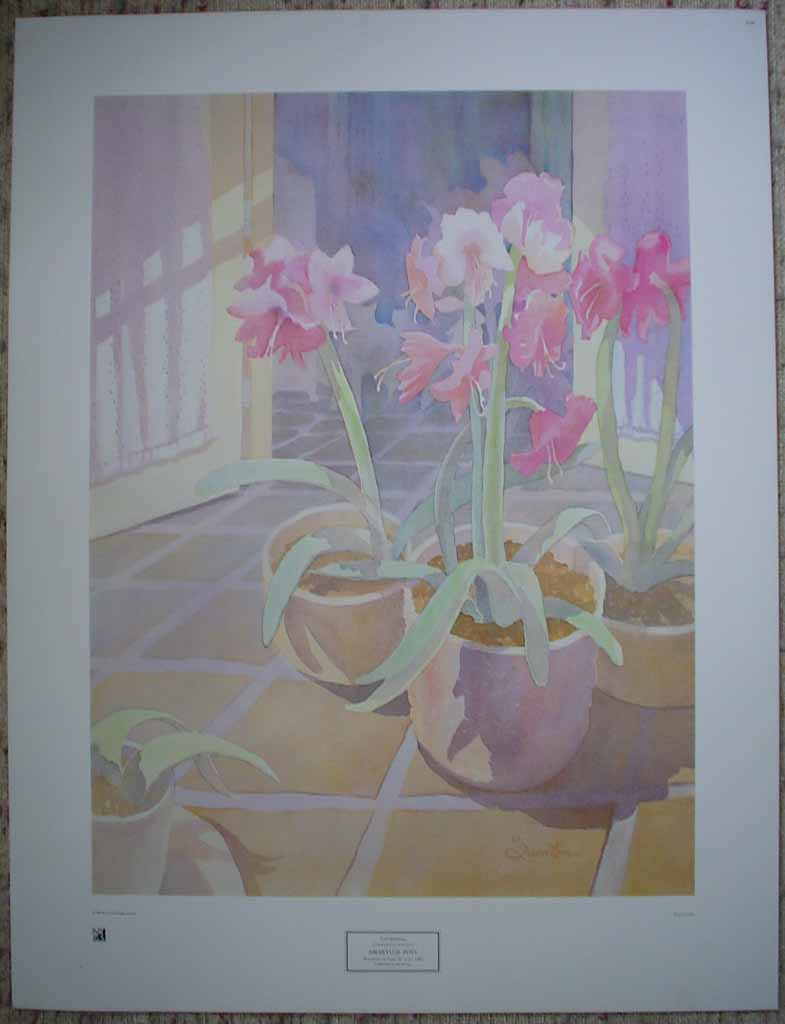 Amaryllis Pots by Lori Quarton, shown with full margins - offset lithograph reproduction vintage fine art print