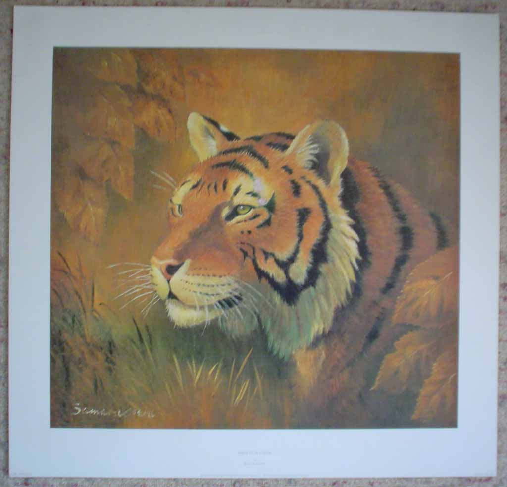 Portrait Of A Tiger by Rama Samaraweera, shown with full margins - offset lithograph reproduction vintage fine art print