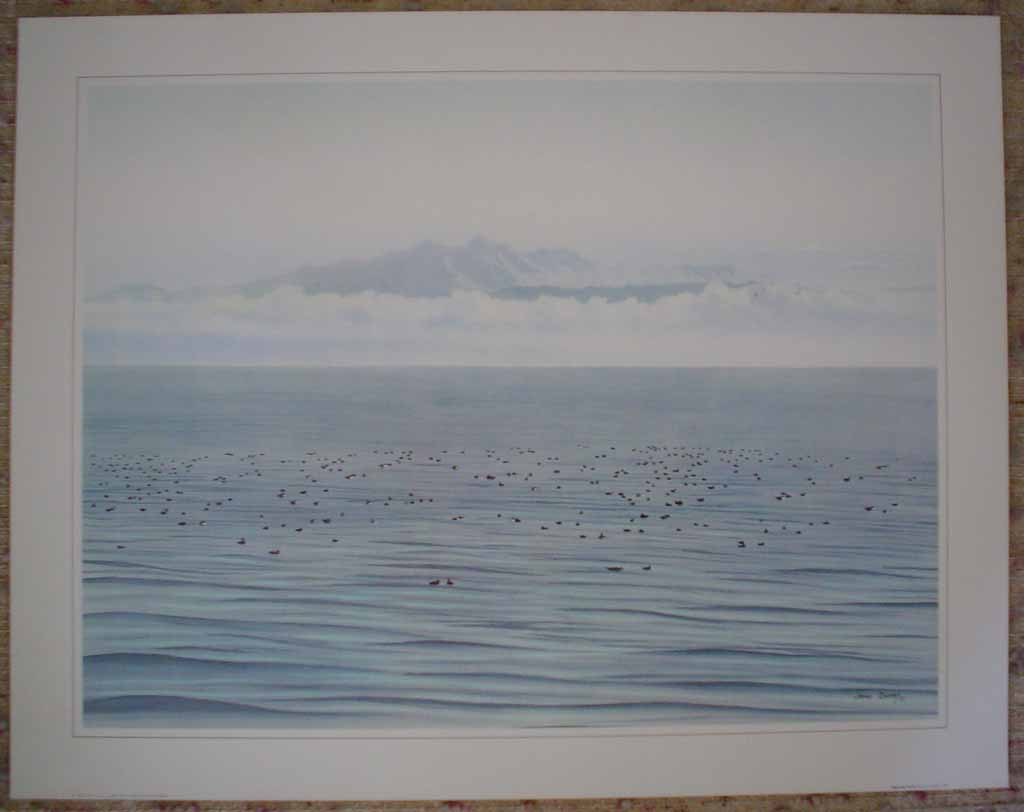 Migrating Ducks by Jeane Duffey, 18x24, printed in England, shown with full margins - offset lithograph reproduction vintage fine art print