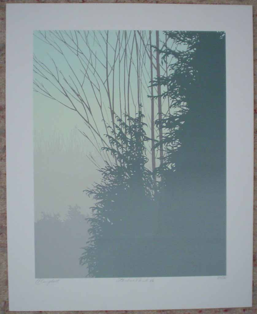 Stanley Park '86 by Leyda Campbell, shown with full margins - original screenprint/silkscreen limited edition fine art print, signed, titled and numbered 35/86 by artist