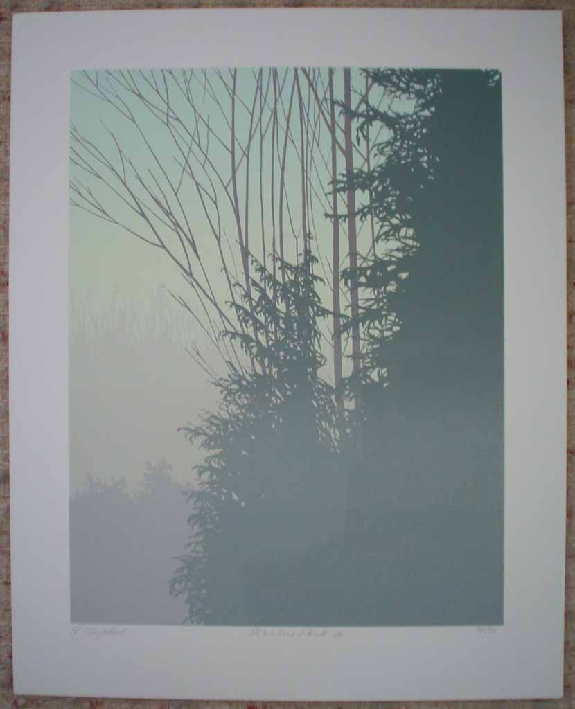 Stanley Park '86 by Leyda Campbell, shown with full margins - original screenprint/silkscreen limited edition fine art print, signed, titled and numbered 36/86 by artist
