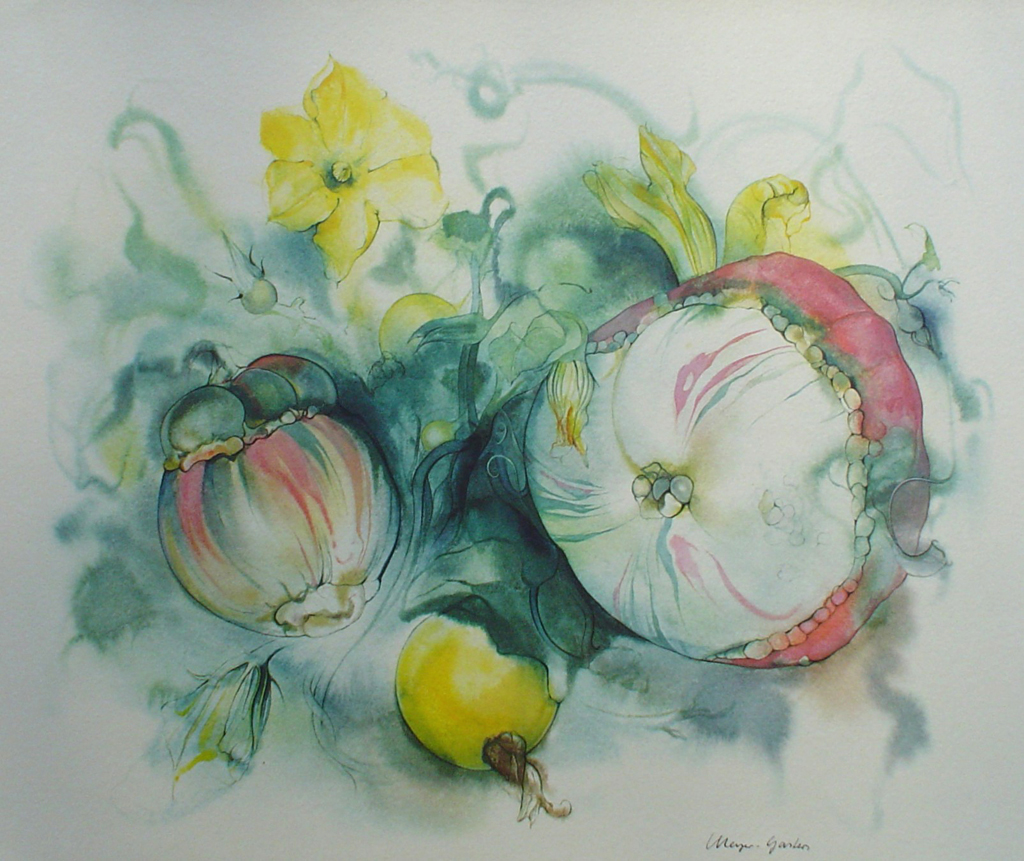 """""""Yellow Squash Flowers"""" by Klaus Meyer Gasters - vintage 1970's/1980's offset lithograph reproduction watercolour collectible fine art print (size approx. 15 x 18.5 inches/ ca. 38 x 47 cm) - KerrisdaleGallery.com"""