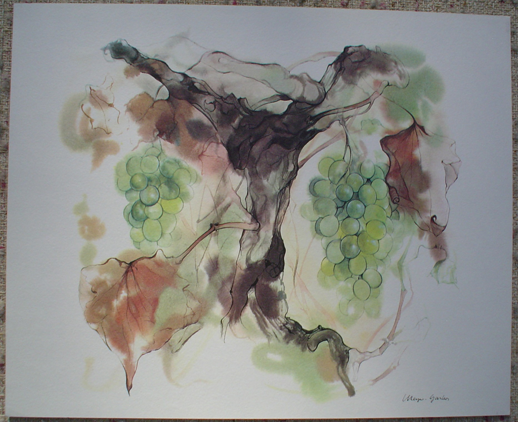 """Green Grapes"", in German: ""Weintrauben"" by Klaus Meyer Gasters - vintage 1970's/1980's offset lithograph reproduction watercolour collectible fine art print (size approx. 15 x 18.5 inches/ ca. 38 x 47 cm) - KerrisdaleGallery.com"