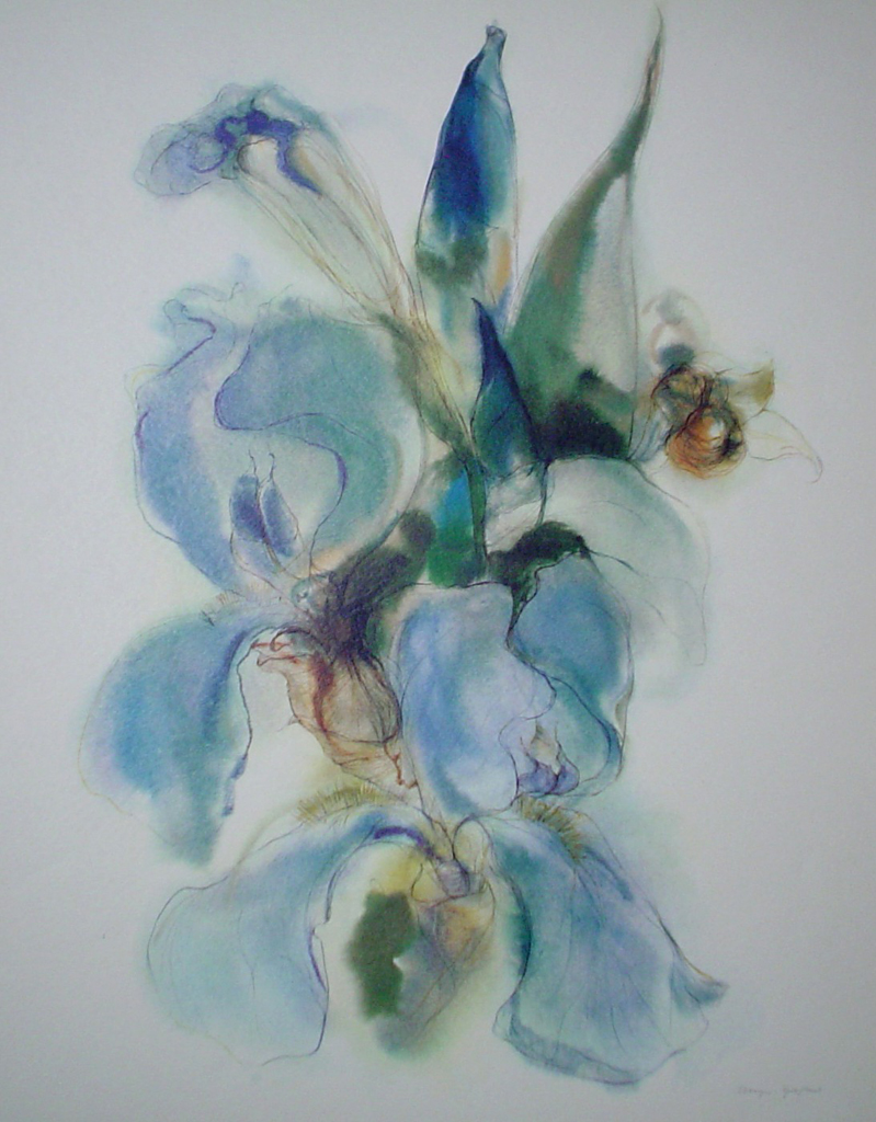 """""""Blue Iris"""" by Klaus Meyer Gasters - vintage 1970's/1980's offset lithograph reproduction watercolour collectible fine art print (size approx. 18.5 x 15 inches/ ca. 47 x 38 cm) - KerrisdaleGallery.com"""