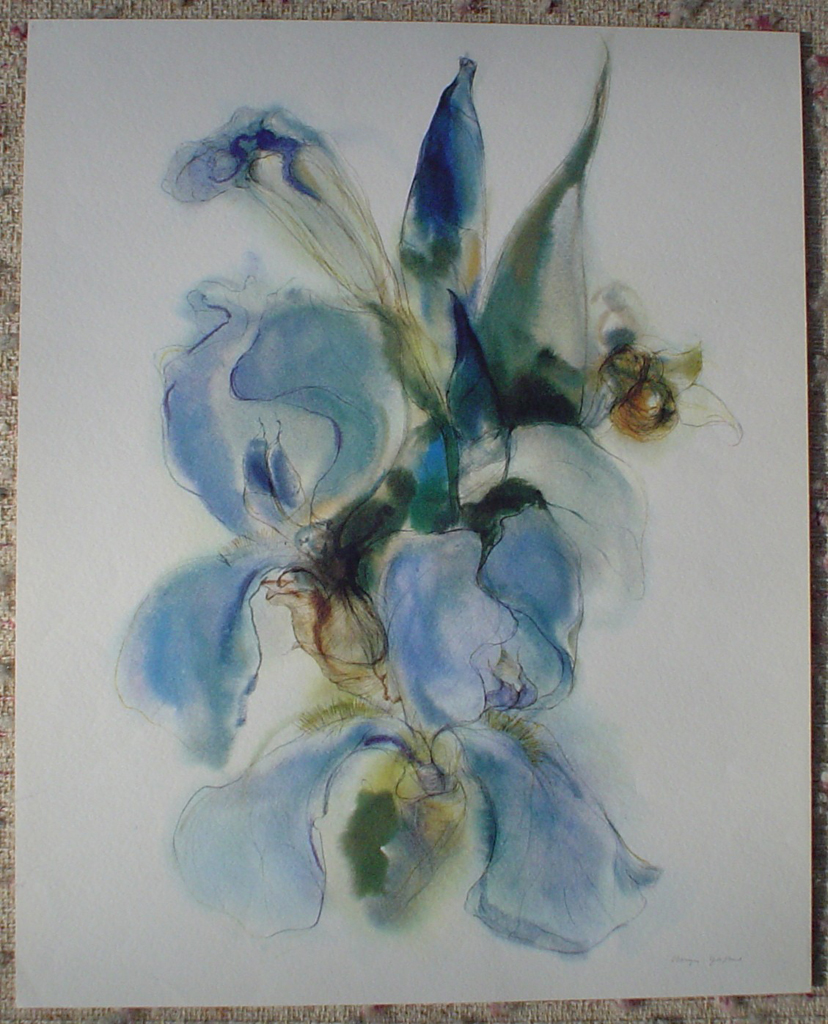 """Blue Iris"" by Klaus Meyer Gasters, shown with full margins - vintage 1970's/1980's offset lithograph reproduction watercolour collectible fine art print (size approx. 18.5 x 15 inches/ ca. 47 x 38 cm) - KerrisdaleGallery.com"