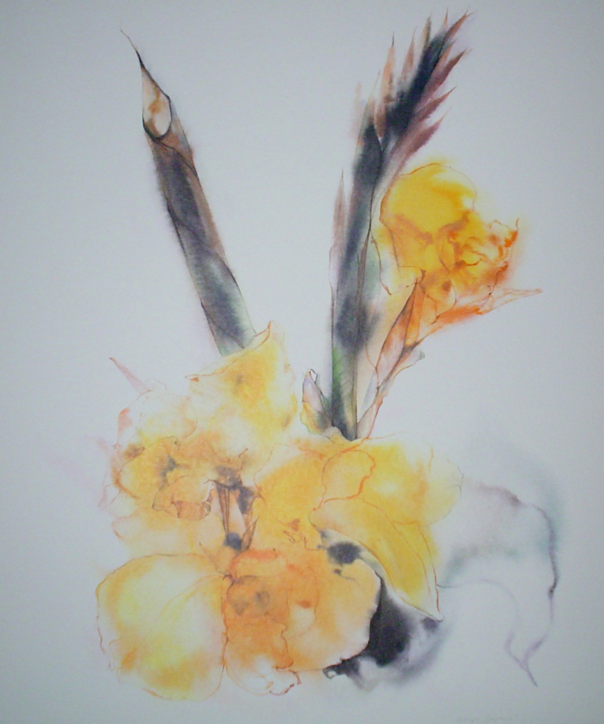 """""""Yellow Gladiola"""" by Klaus Meyer Gasters - vintage 1970's/1980's offset lithograph reproduction watercolour collectible fine art print (size approx. 18.5 x 15 inches/ ca 47 x 38 cm) - KerrisdaleGallery.com"""