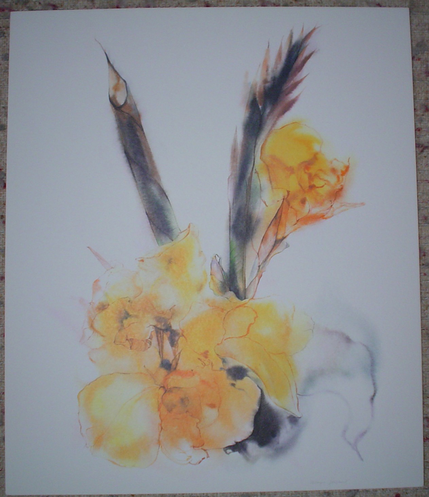 """Yellow Gladiola"" by Klaus Meyer Gasters, shown with full margins - vintage 1970's/1980's offset lithograph reproduction watercolour collectible fine art print (size approx. 18.5 x 15 inches/ ca 47 x 38 cm) - KerrisdaleGallery.com"