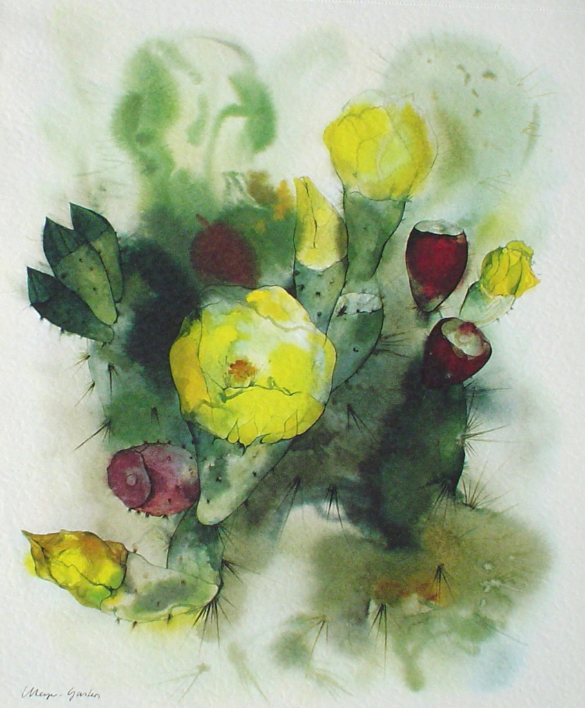 """Yellow Cactus Flowers"" by Klaus Meyer Gasters - vintage 1977 offset lithograph reproduction watercolour collectible fine art print (size 12.5 x 10.75 inches/31.75 x 27 cm) - KerrisdaleGallery.com"