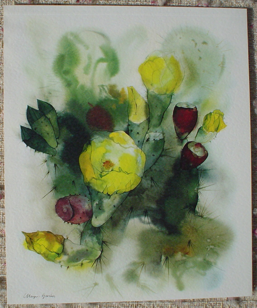 """Yellow Cactus Flowers"" by Klaus Meyer Gasters, shown with full margins - vintage 1977 offset lithograph reproduction watercolour collectible fine art print (size 12.5 x 10.75 inches/31.75 x 27 cm) - KerrisdaleGallery.com"