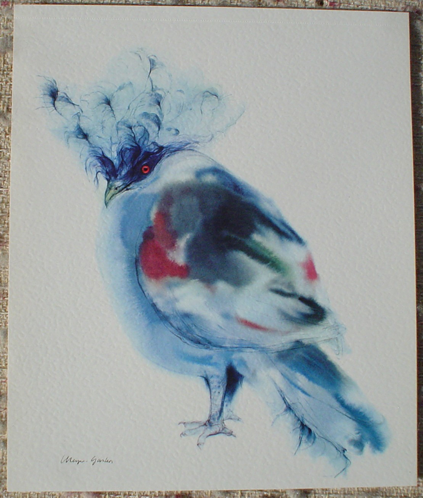 """""""Blue Crowned Pigeon"""" in German:""""Kronentaube"""" by Klaus Meyer Gasters, shown with full margins - vintage 1977 offset lithograph reproduction watercolour collectible fine art print (size 12.5 x 10.75 inches/31.75 x 27 cm) - KerrisdaleGallery.com"""