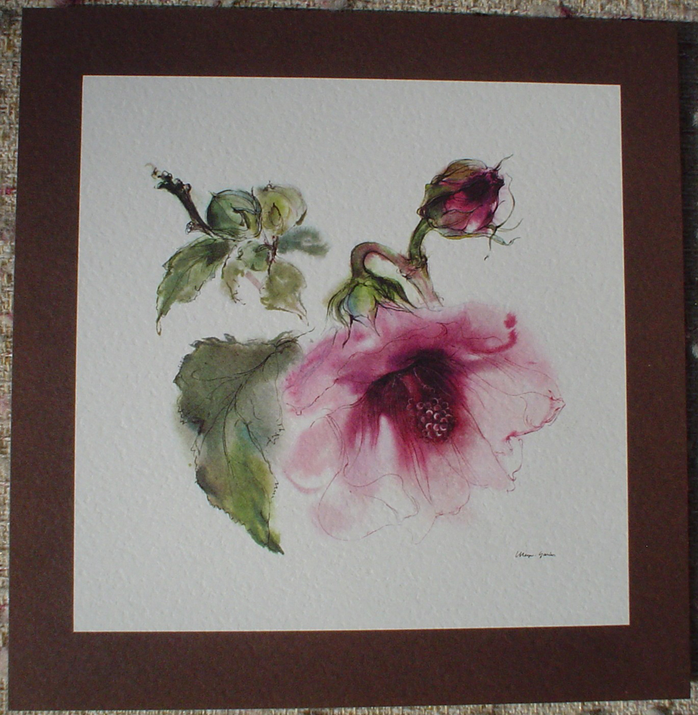 """Red Hibiscus Flower With Bud"" by Klaus Meyer Gasters, shown with full margin - vintage offset lithograph reproduction watercolour collectible art print from 1981 (size 12 x 11.5 inches/30.5 x 29.25 cm) - KerrisdaleGallery.com"