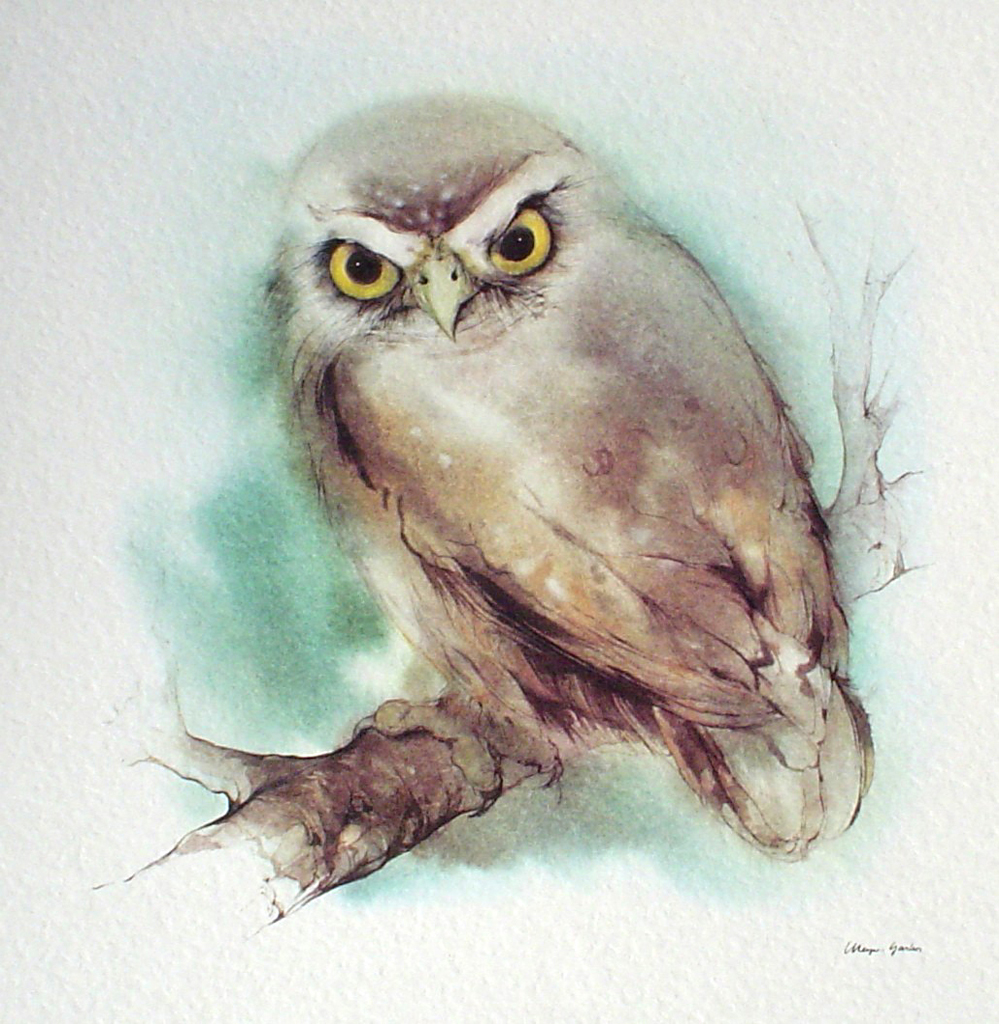 """Owl"" in German:""Eule"" by Klaus Meyer Gasters - vintage offset lithograph reproduction watercolour collectible art print from 1981 (size 12 x 11.5 inches/30.5 x 29.25 cm) - KerrisdaleGallery.com"