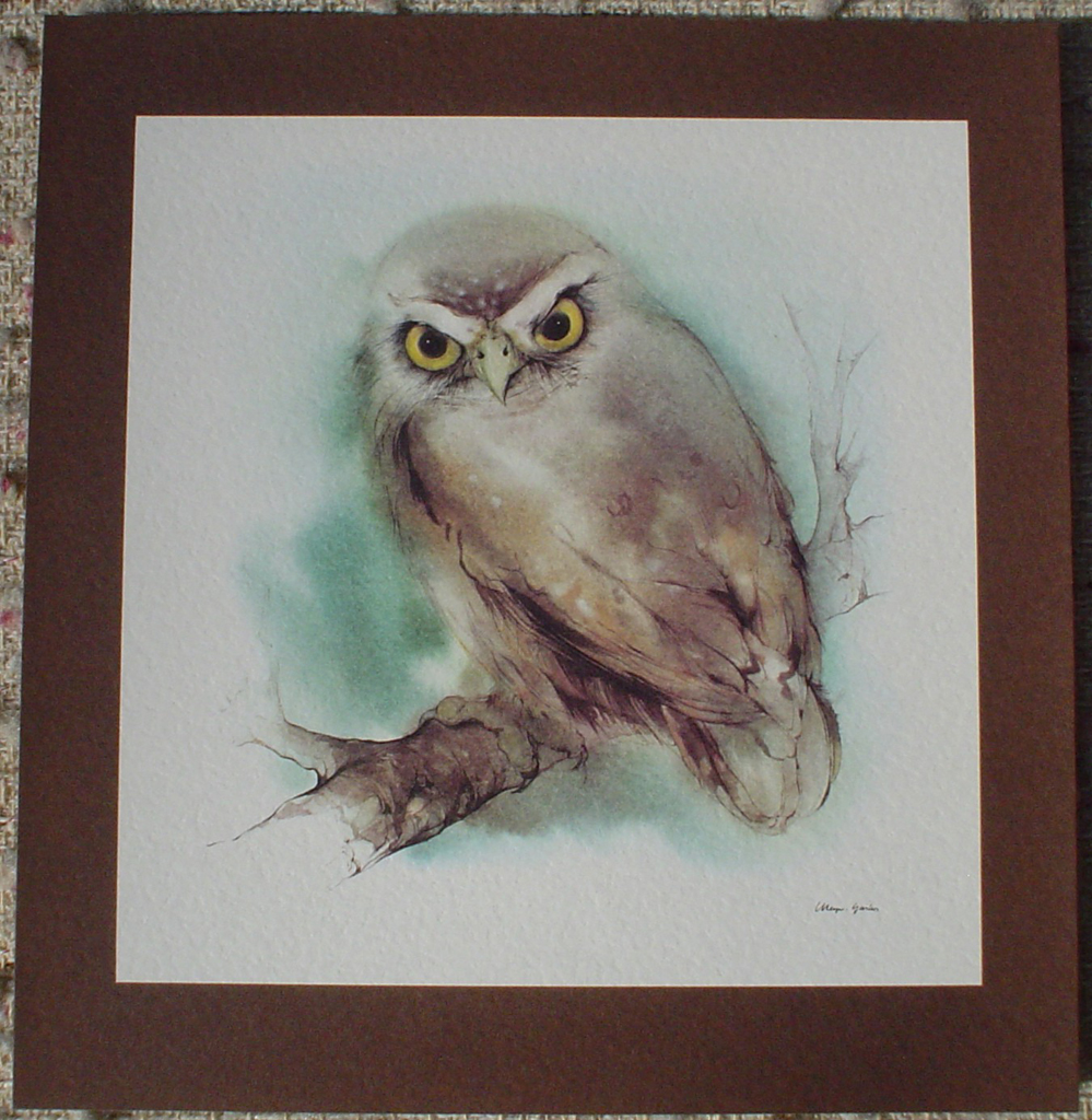 """Owl"" in German:""Eule"" by Klaus Meyer Gasters, shown with full margins - vintage offset lithograph reproduction watercolour collectible art print from 1981 (size 12 x 11.5 inches/30.5 x 29.25 cm) - KerrisdaleGallery.com"