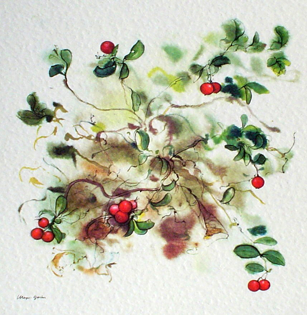 """Red Cranberries"", in German:""Preiselbeeren"" by Klaus Meyer Gasters - vintage offset lithograph reproduction watercolour collectible art print from 1981, (size 12 x 11.5 inches/30.5 x 29.25 cm) - KerrisdaleGallery.com"