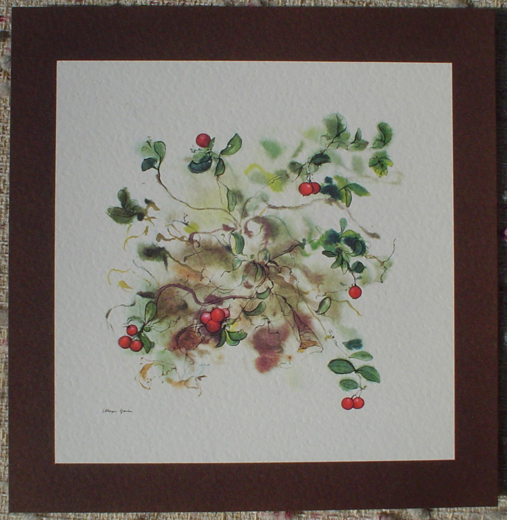 """Red Cranberries"", in German:""Preiselbeeren"" by Klaus Meyer Gasters, shown with full margins - vintage offset lithograph reproduction watercolour collectible art print from 1981 (size 12 x 11.5 inches/30.5 x 29.25 cm) - KerrisdaleGallery.com"
