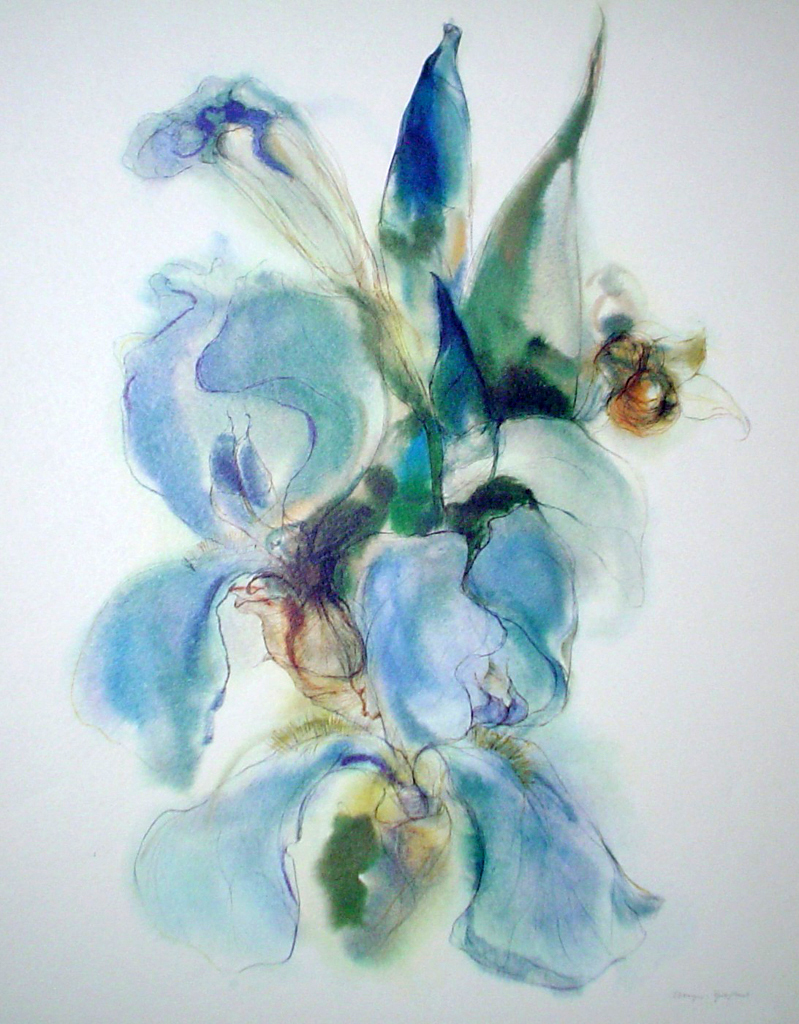 """Blue Iris"" by Klaus Meyer Gasters - vintage 1970's/1980's offset lithograph reproduction watercolour collectible fine art print (size approx. 15 x 18.5 inches/ ca 38 x 47 cm) - KerrisdaleGallery"