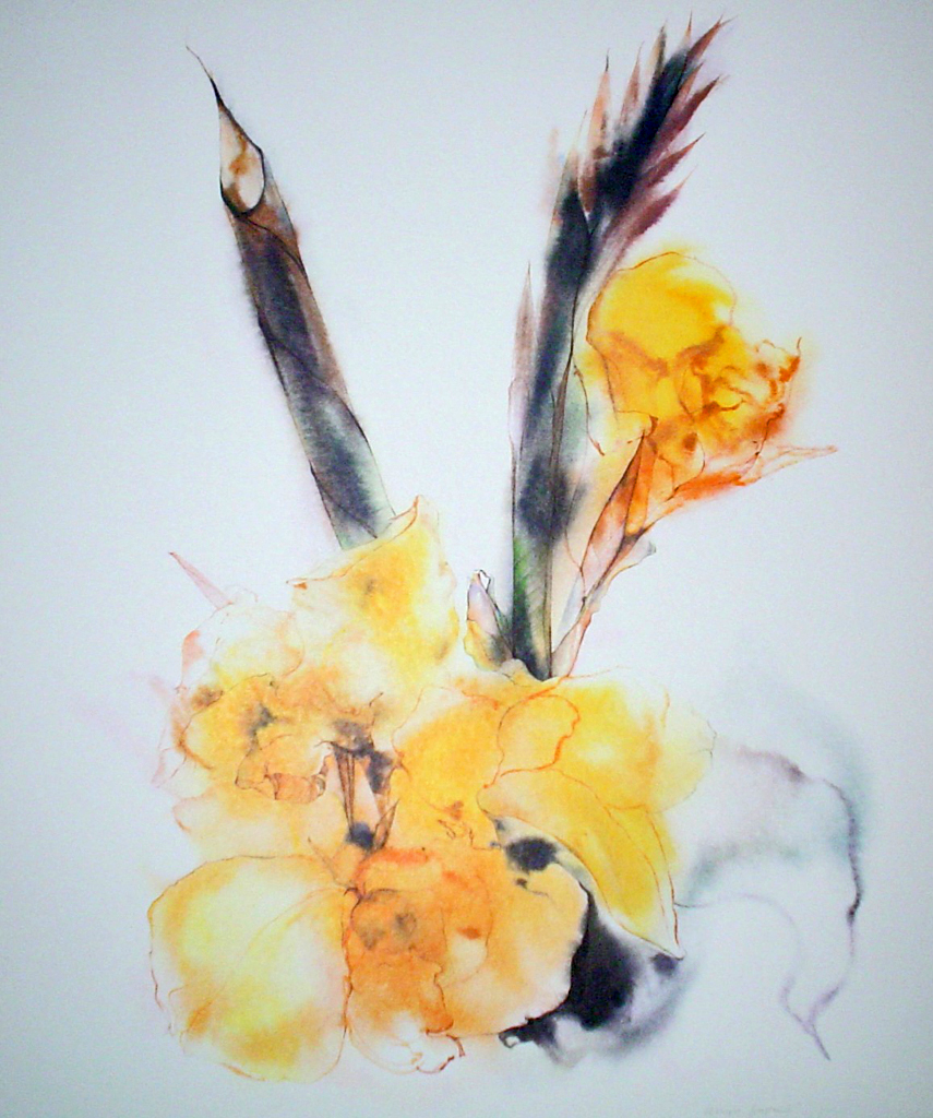 """Yellow Gladiola"" by Klaus Meyer Gasters - vintage 1970's/1980's offset lithograph reproduction watercolour collectible fine art print (size approx. 15 x 18.5 inches/ ca 38 x 47 cm) - KerrisdaleGallery.com"