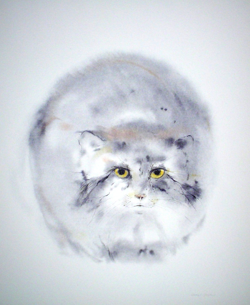 """""""Pallas Cat"""", in German: """"Manulkatze"""" by Klaus Meyer Gasters - vintage 1970's/1980's offset lithograph reproduction watercolour collectible fine art print (size approx. 15 x 18.5 inches/ ca 38 x 47 cm) - KerrisdaleGallery.com"""