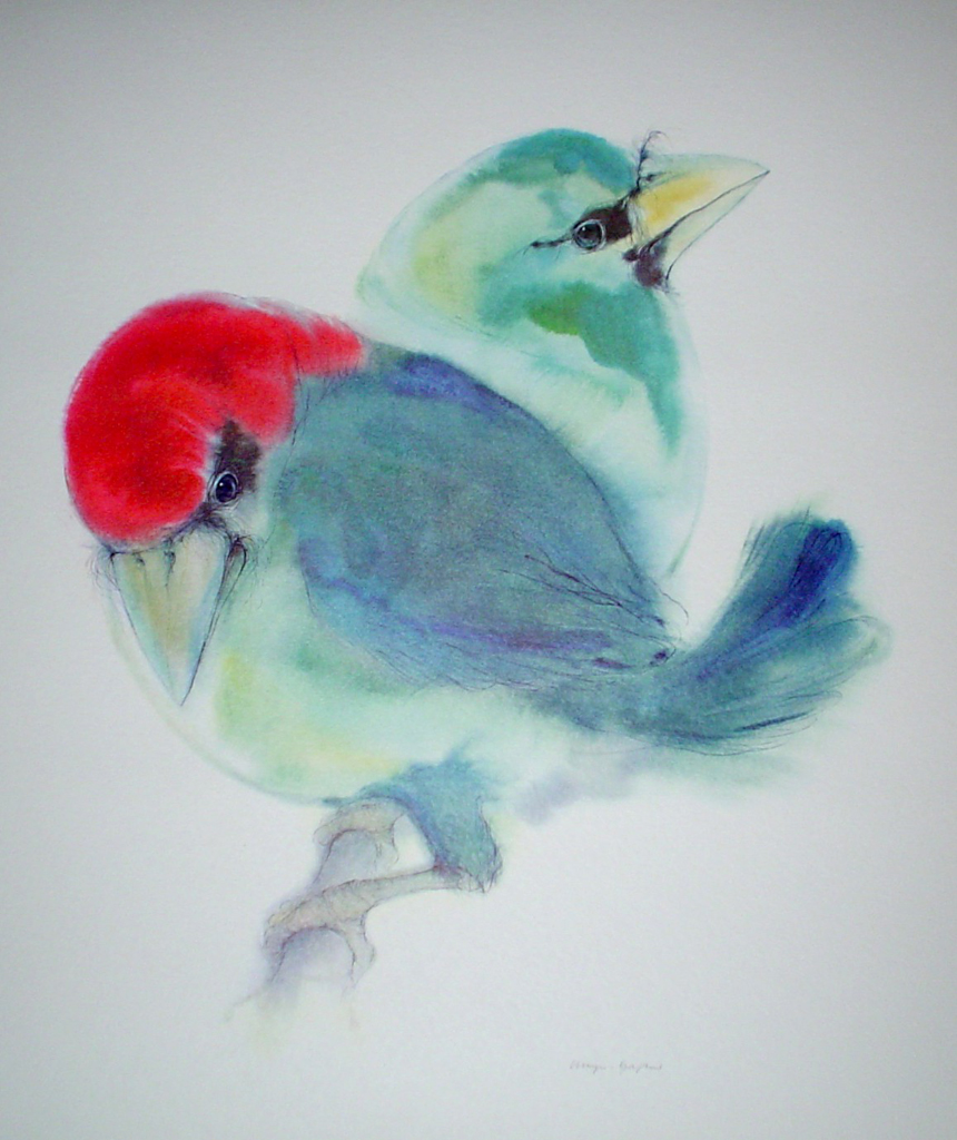 """Two Blue Barbet Birds"" by Klaus Meyer Gasters - vintage 1970's/1980's offset lithograph reproduction watercolour collectible fine art print (size approx. 15 x 18.5 inches/ ca 38 x 47 cm) - KerrisdaleGallery.com"